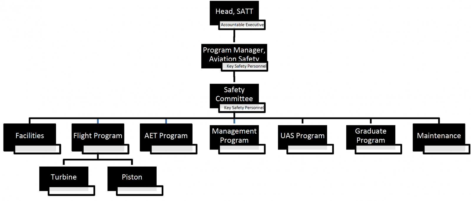 Safety Org Chart