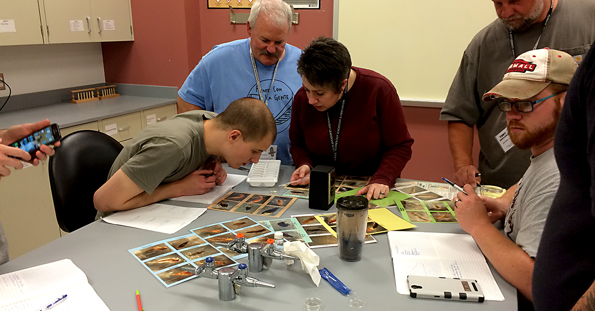 Teachers study insects as part of the TRAILS summer program.