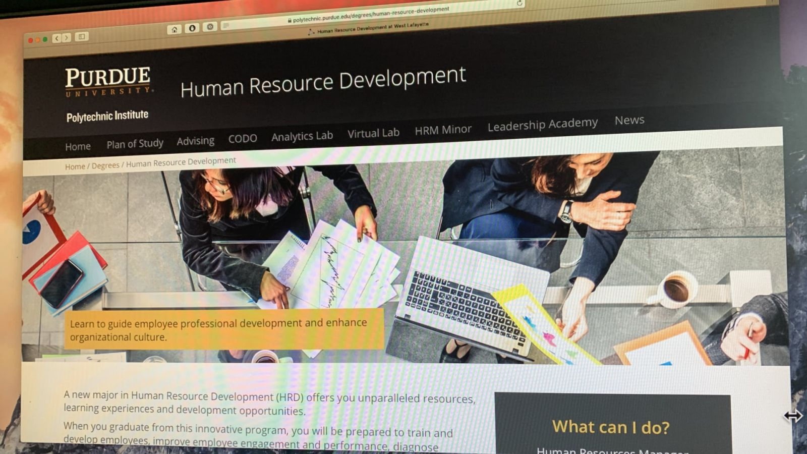 Human Resource Development major