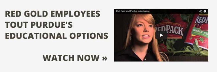 Red Gold Employee Interviews