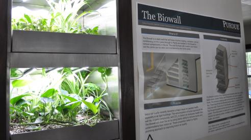 Biowall at Solar Decathlon house